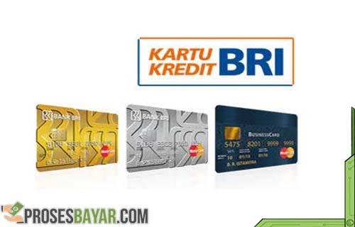 5 Cara Cek Limit Kartu Kredit Bri Yang Mudah Dan Cepat Prosesbayar