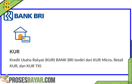 Syarat dan Cara Pengajuan Pinjaman Bank BRI