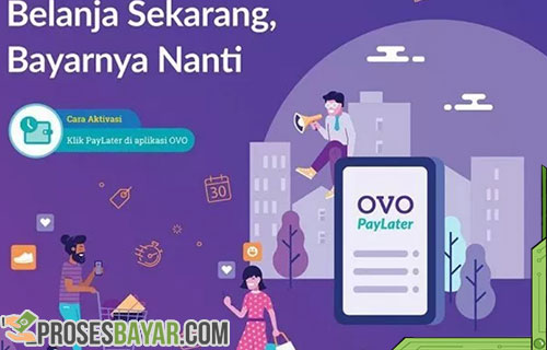 Persyaratan Untuk Mendapatkan OVO Paylater