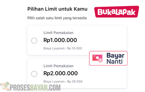 Jenis Kredit Limit BayarNanti