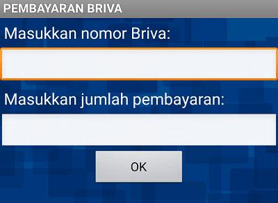 Masukan Nomor BRIVA