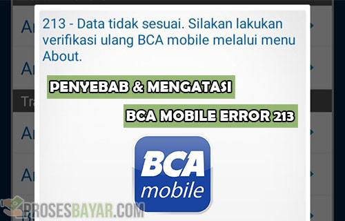 Penyebab dan Cara Mengatasi BCA Mobile Error 213